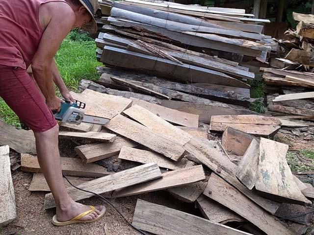 樫の木 薪割り